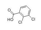 2,3-二氯苯甲酸